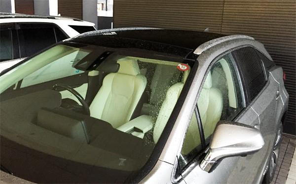 レクサス・新型RX ルーフレール